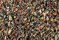 Korallensand von Menorca. Untere Bildkante 20 mm