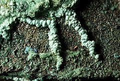 Römische Bronze